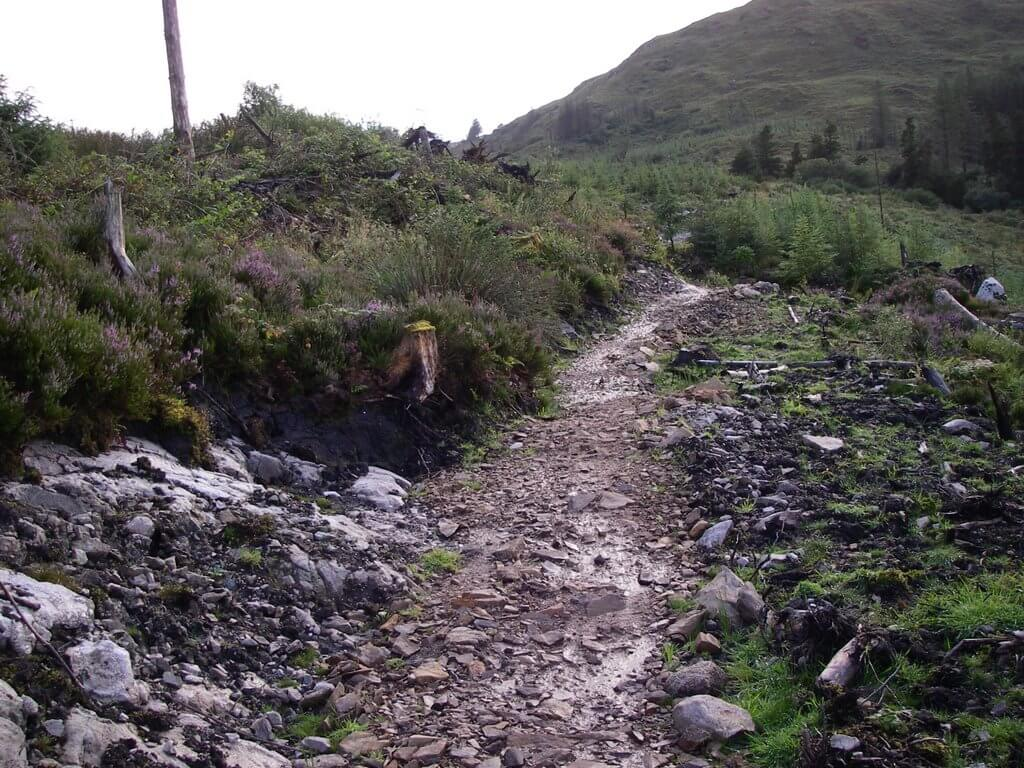 Derroura Mountain Bike Trail Galway Photos Reviews And